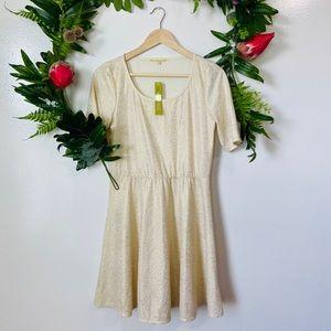 Gianni Bini $109 NWT a-line shimmer dress medium